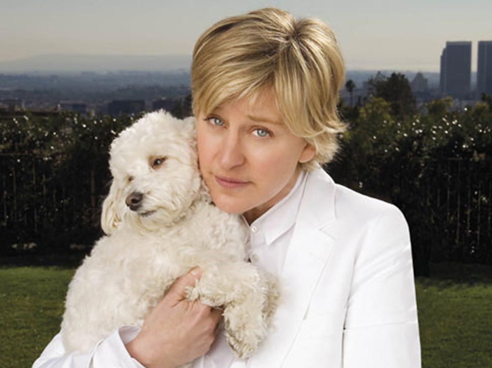 Ellen Degeneres dog